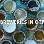The 8 Best Breweries in Ottawa