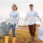 5 Best Volunteer Groups in Ottawa